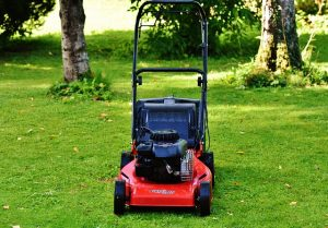 Best Self-Propelled Lawn Mower
